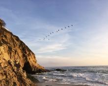 1000 Steps sunset Laguna Beach