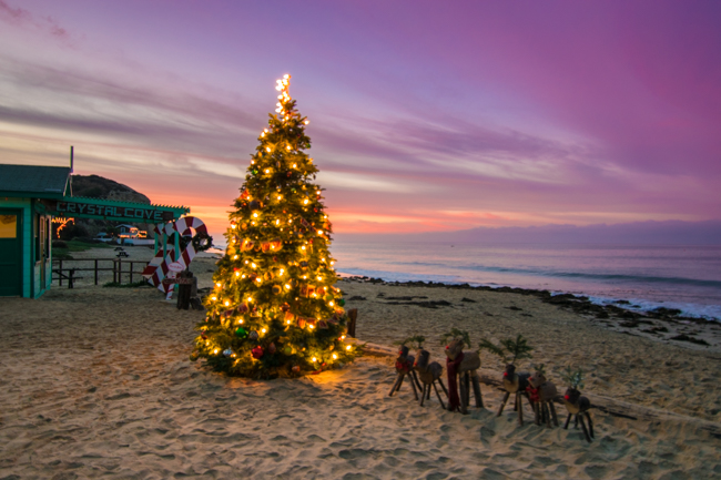 Lit Christmas tree Crystal Cove Sunrise