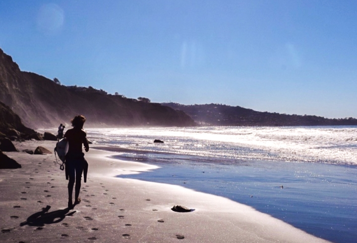 A Perfect Day Trip to La Jolla